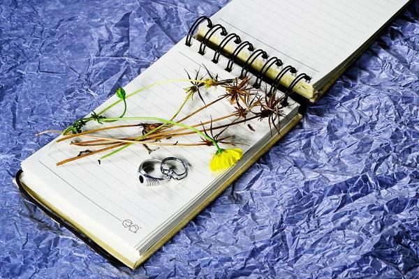 Как сделать своими руками артбука 969