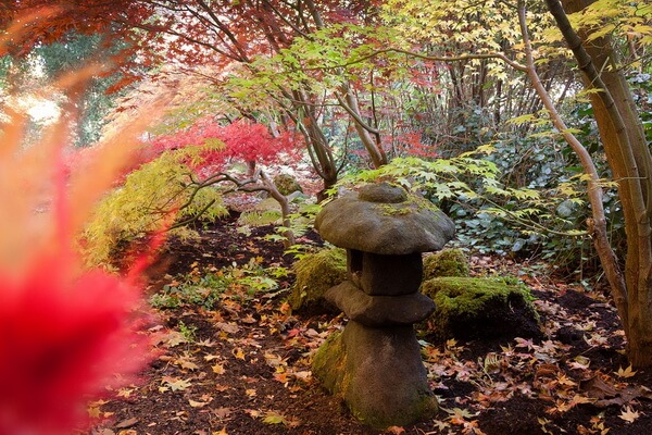 Осень в Японии в парках и садах