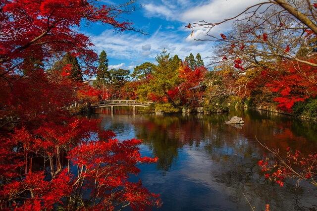 Осень в Японии - красивые фото и картинки для вдохновения