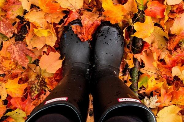 Чем заняться осенью - идеи нескучного осеннего досуга