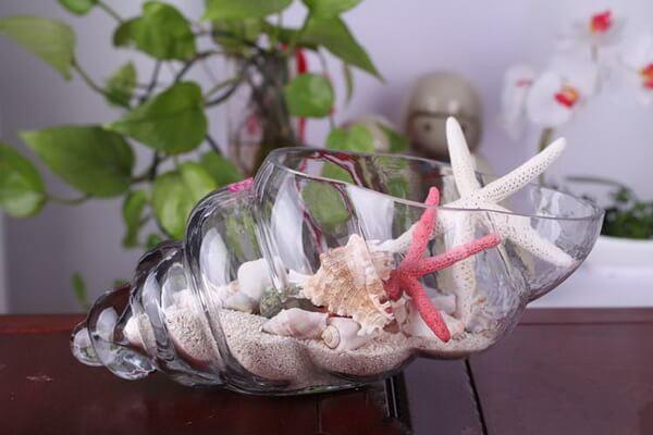 Декор из ракушек в интерьере - фото-идеи оформления