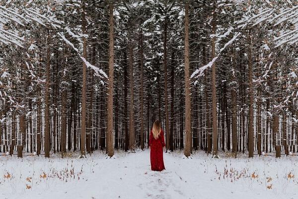Зимняя фотосессия в лесу - лучшие идеи с фото