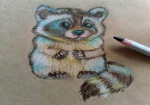 Как нарисовать енота карандашом поэтапно - шаг 8