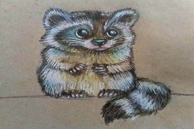 Как нарисовать енота карандашом поэтапно - урок рисования для начинающих