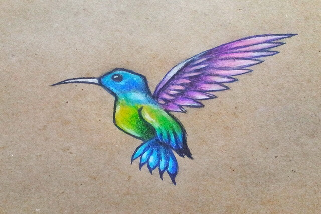 Как нарисовать колибри поэтапно - урок рисования карандашом для начинающих