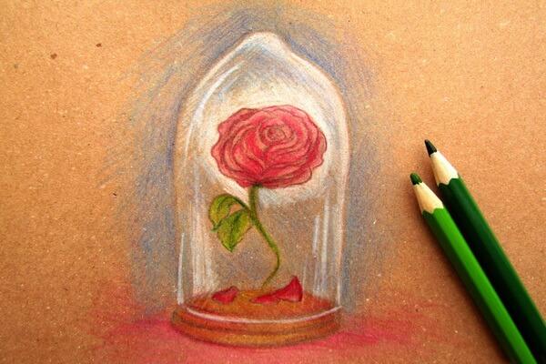Как нарисовать рисунок к сказке Красавица и чудовище - Рисуем красивую розу в колбе карандашом поэтапно - шаги 7 и 8