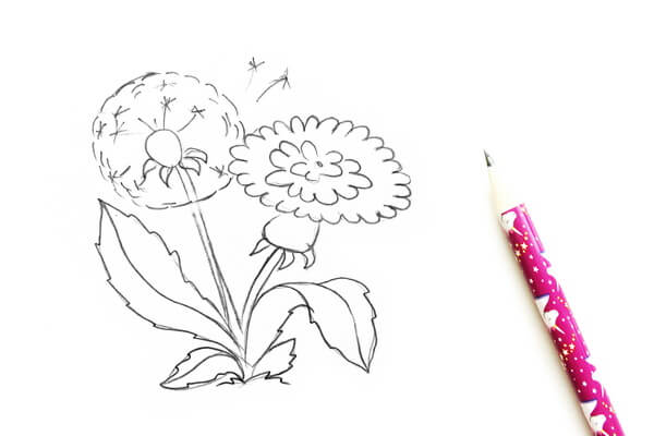Как нарисовать одуванчик карандашом поэтапно - шаг 3