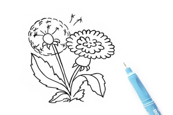 Как нарисовать одуванчик карандашом поэтапно - шаг 4
