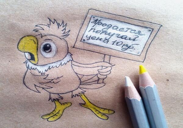 Как нарисовать попугая Кешу поэтапно - шаг 7
