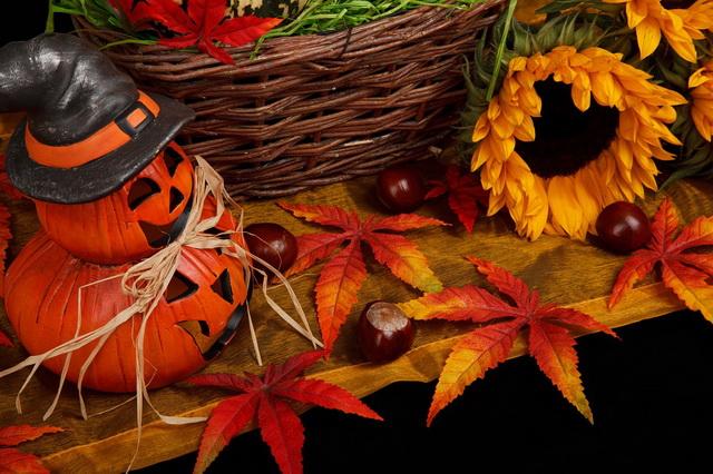 Идеи украшения дома на Хэллоуин своими руками из доступных материалов