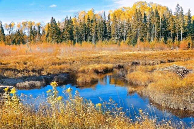 Фото красивых осенних пейзажей для вдохновения