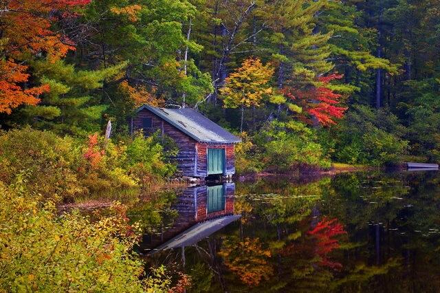 Красивые осенние пейзажи леса - фото для вдохновения
