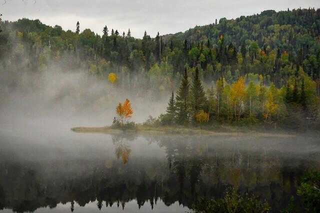 Осенний лес в тумане - Красивые фото осенних пейзажей для вдохновения