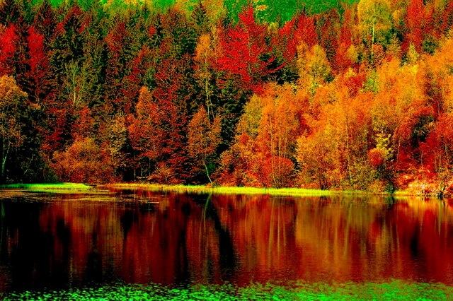Красота осени - Красивые фото осенних пейзажей для вдохновения
