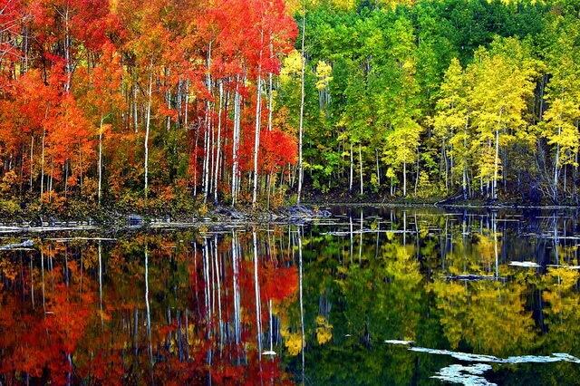 Магия осени - фото красивых осенних пейзажей для вдохновения