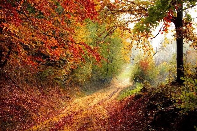 Красивые осенние пейзажи - фото и описание