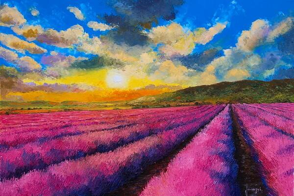 Лавандовые поля в живописи художника Жан-Марк Жаньячик