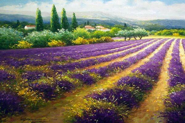 Лавандовые поля на картинах Герхарда Несвадба