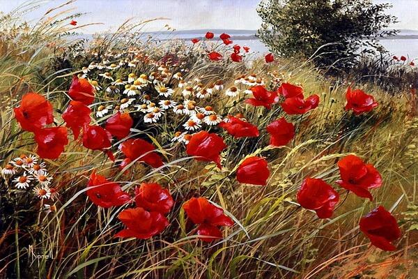 Маки на картинах Mary Dipnall