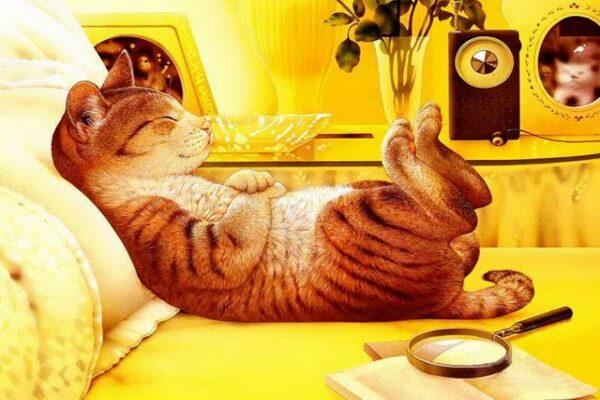 Забавные коты Макото Мурамацу