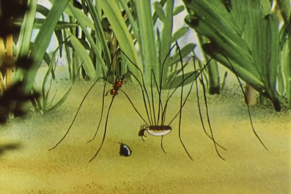 Интересные факты про мультфильм «Путешествие муравья» (1983)