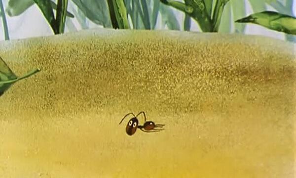 Мультик «Путешествие муравья» (1983)