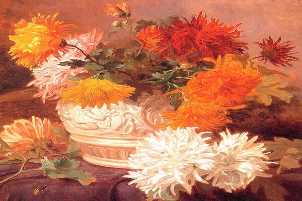 Осенние цветы в живописи - Элоиза Гарриэт-Стеннард – «Натюрморт с хризантемами»
