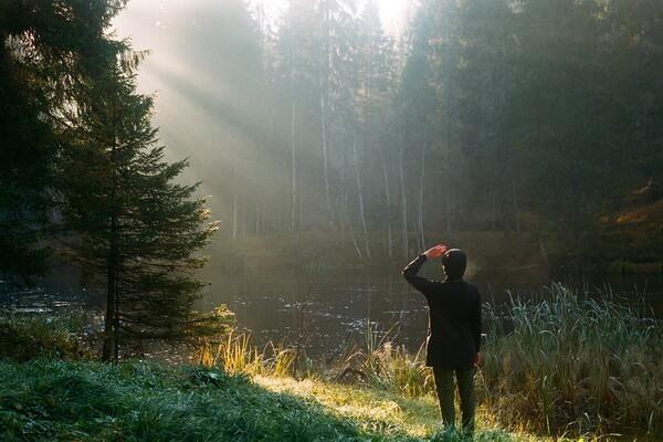 Осенняя фотосессия в лесу в тумане