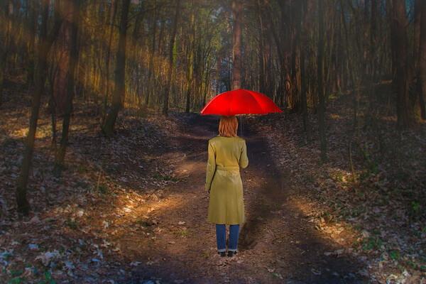 Осенняя фотосессия в лесу в дождь