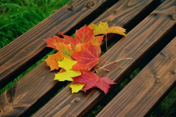 Осенняя икебана своими руками пошагово