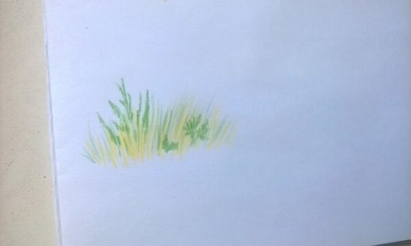 Пейзаж цветными карандашами поэтапно - шаг 8