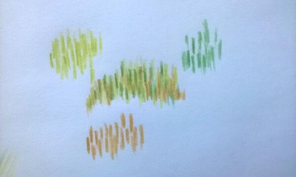 Пейзаж цветными карандашами для начинающих