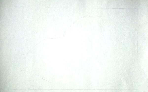 Как рисовать красивые рисунки морских ракушек поэтапно - шаг 1