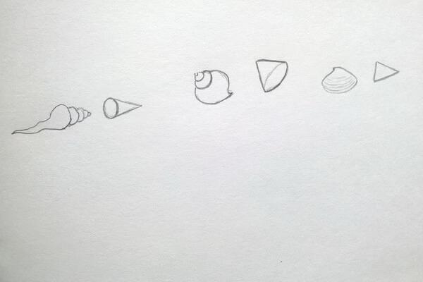 Как рисовать красивые рисунки морских ракушек поэтапно
