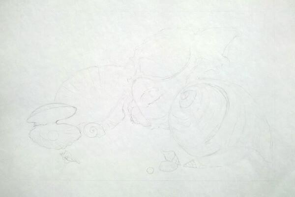 Как рисовать красивые рисунки морских ракушек поэтапно - шаг 3