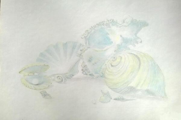 Как рисовать красивые рисунки морских ракушек поэтапно - шаг 6
