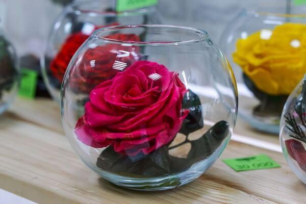 Красивые розы в подарок - Бальзамированные розы