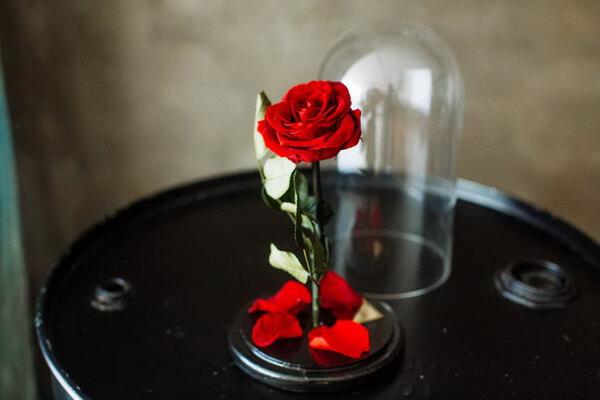 Стабилизированные розы - основные виды