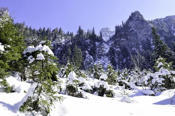 Красивые зимние пейзажи леса и гор